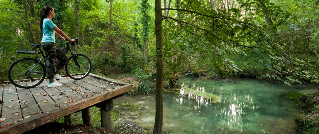 Itinerari naturalistici - Sile - BHR Treviso Hotel