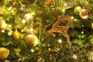 Pranzo di Natale - DiVino Osteria Trevigiana - BHR Treviso Hotel
